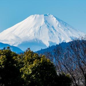 昭和記念公園 富士山が見える場所(2/1)
