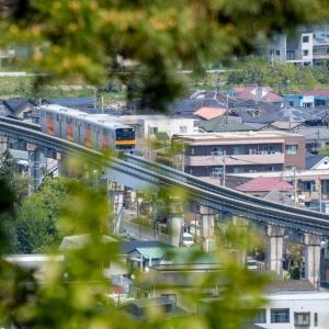 今週の高幡不動尊(04/29 その2) 見晴らし台からの眺め