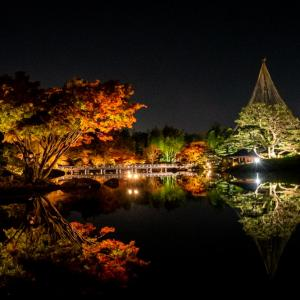 昭和記念公園 秋の夜散歩 日本庭園の水景色