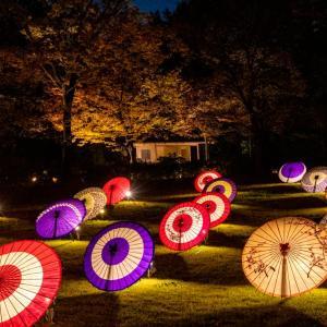 昭和記念公園 秋の夜散歩 日本庭園の和傘