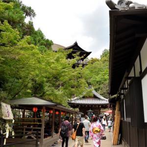 【一日一枚写真】清水寺を目指して【一眼レフ】