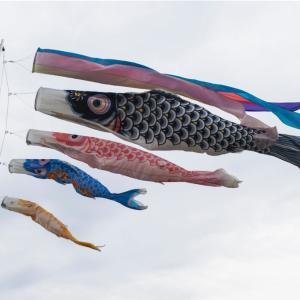 【一日一枚写真】鯉のぼり【一眼レフ】
