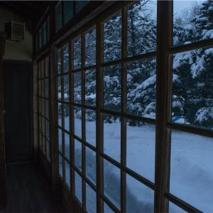 【一日一枚写真】冬回廊②【一眼レフ】