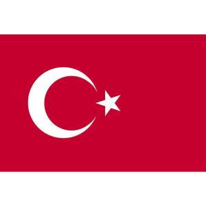トルコ 中央銀行の政策金利の推移【BIS統計】