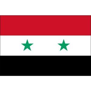 シリア GDPの推移【IMF統計】