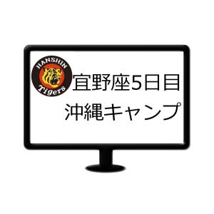 阪神2020年沖縄キャンプ5日ケースバッテング
