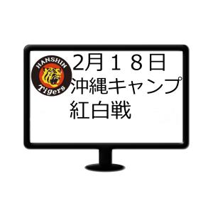 2月18日 阪神 沖縄キャンプ紅白戦試合速報(かりゆしホテルズボールパーク宜野座)