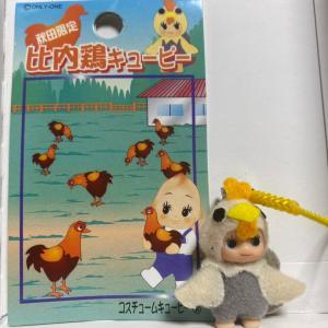 【東北】秋田限定「比内鶏」