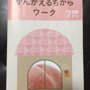 【Z会年少コース】7月号【内容・感想】