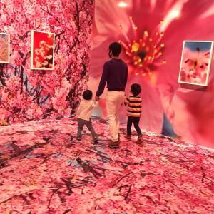 蜷川実花展に子連れで行ってきた。