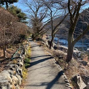初春の御岳渓谷を歩く