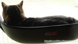 猫窓ベッド
