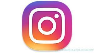 【Instagram/ビニール袋と猫】