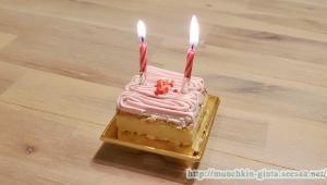 くるみちゃん、2歳のお誕生日!