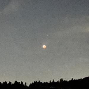 我が家から見えた昨晩の月。