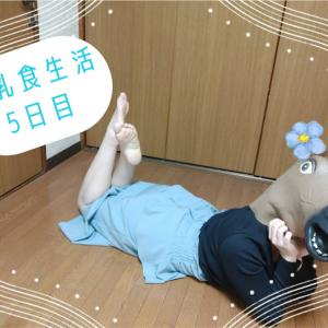 🍚離乳食生活×5日目