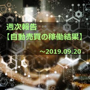 自動売買の運用実績 2019.09.20現在