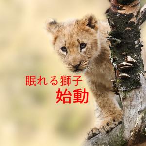 眠れる獅子(トライオートETF)始動(2019.09.05)