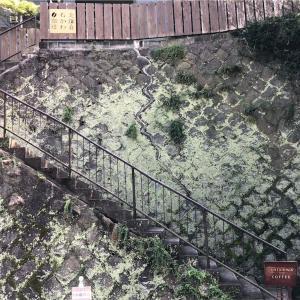 【北鎌倉】石かわ珈琲