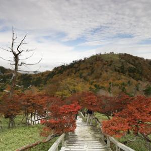 秋の大台ヶ原に行って来ました!