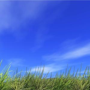 【複勝コロガシ】複勝コロガシ企画シーズン⑤ 2レース目 〜札幌メイン UHB賞〜
