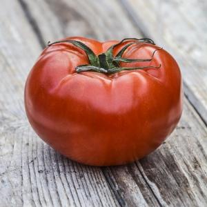 【本日の豆知】美味しいトマトの選び方は?