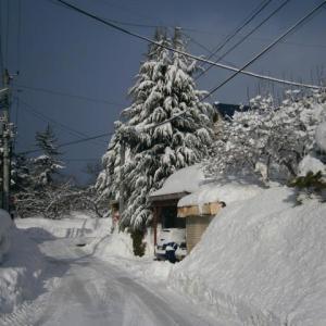 夏だから冬の記憶