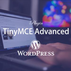 TinyMCE Advanced(ビジュアルエディタ拡張)でWordPressを快適にカスタマイズ!