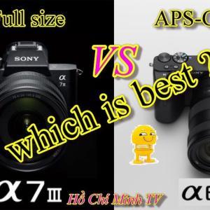 フルサイズ or APS-C どっち オススメは?