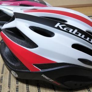 レオパパもヘルメット買った~!