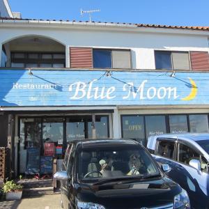 神奈川県横須賀市にあるドッグカフェ「BLUE MOON」