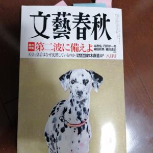 Goto政権