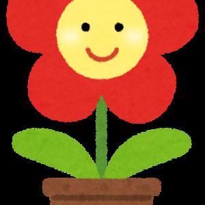 ~大人になってから花が咲くタイプ~