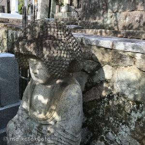 【京都・金戒光明寺】アフロ仏さま、あなたはどうしてアフロなの?