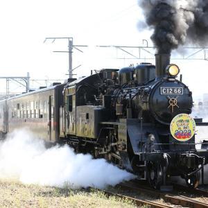 SLもおか とちぎ国体HM、真岡線全通100周年記念、関東鉄道Strawberry Train