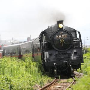 SLもおか、東武宇都宮線、EF60 123