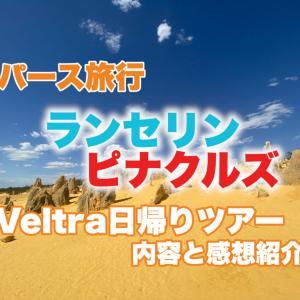 ピナクルズとランセリン砂漠を同時に観光したいならおすすめのバスツアー!【オーストラリア旅行/パース】Veltra感想/レビュー