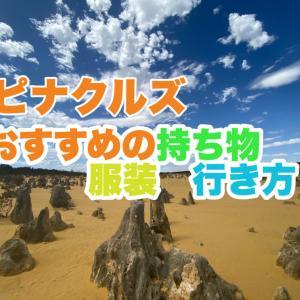 夏のピナクルズ砂漠旅行に必要な持ち物・服装・行き方とは?【オーストラリア/パース】