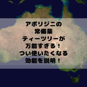 ティーツリーの効果とは?実はオーストラリアのアボリジニの常備薬だった!気になる効能は?