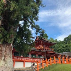 コロナで自粛中…奈良お出かけブログとしての方向性について