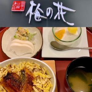 福岡天神🌺梅の花「湯葉と豆腐料理👫女性と大人の贅沢ランチ。」