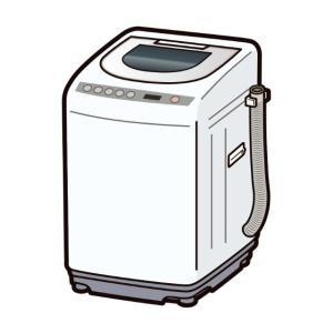 〈グロ注意!?〉洗濯機にエラーコード(C2)が出たので、排水溝を掃除したらとんでもない物が出た話。