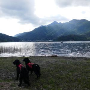動画&湖畔散歩(河口湖)
