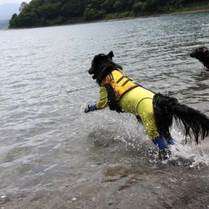 本栖湖のつづき~♪