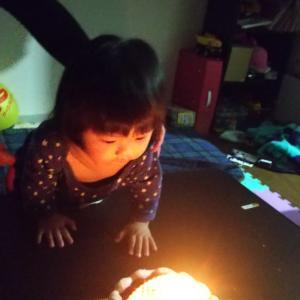 妹おまごちゃん~1歳