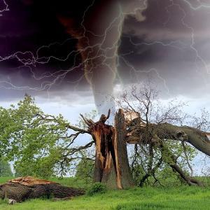 【積水と契約②】自然災害で引渡し前に損害が出たら誰が負担?