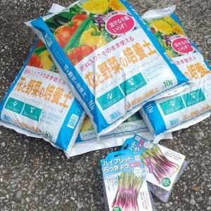Vol.347 アウトドア系 プランター菜園に挑戦