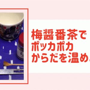 梅醤番茶の効果か身体がポカポカ!作り方を紹介します
