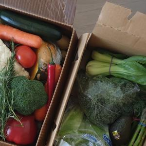 メルボルンのおすすめ野菜宅配サービス