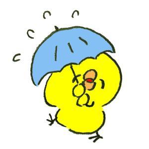 今朝も雨〜